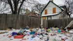 Hundreds of needles strewn on Winnipeg property