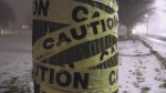 Tree wrapped in caution tape by anti-BRT group UpShiftsCreek on Sunday, January 21,2018. (Daryl Newcombe / CTV London)