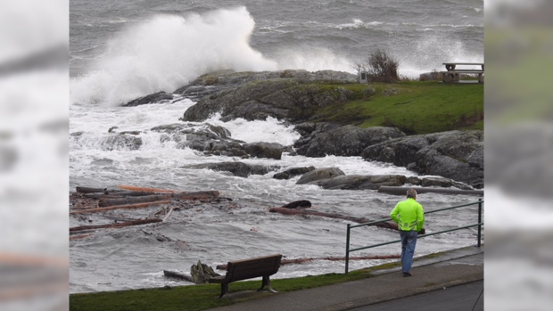 Water crashes on the shore of Oak Bay, B.C. on Sunday, Jan. 21, 2018. (Mark Egan, submitted)