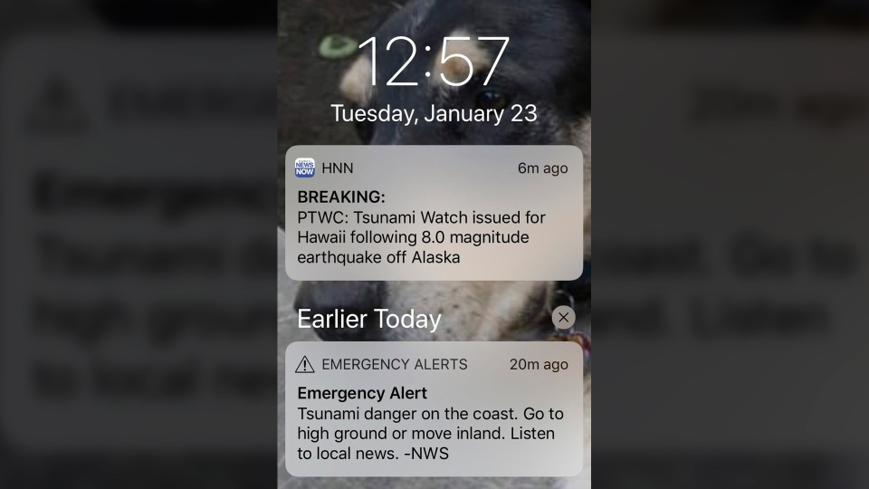 This screenshot shows alerts for a tsunami watch early Tuesday, Jan. 23, 2018, after an earthquake struck off Alaska's Kodiak Island prompting a tsunami warning for a large swath of the state's coast. (AP Photo)