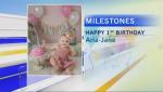 milestones 23