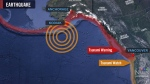 Emergency response to tsunami scare