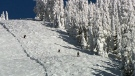 Snowboarder killed at Mount Washington