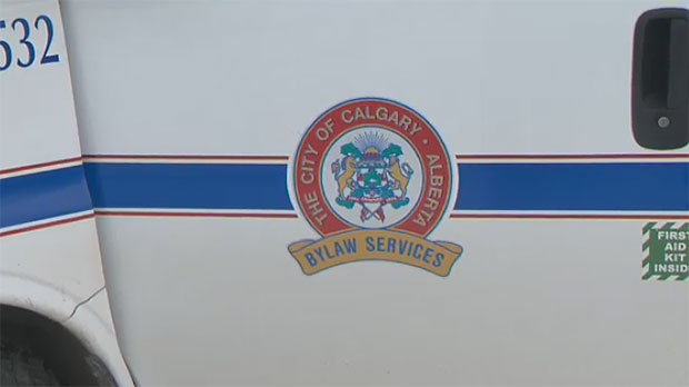 calgary bylaw services
