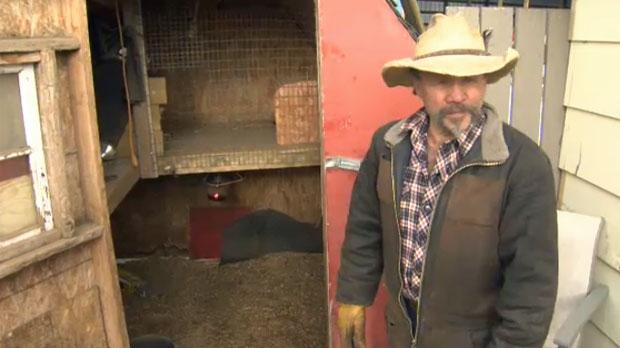 Fred Brokop - Animal welfare investigation
