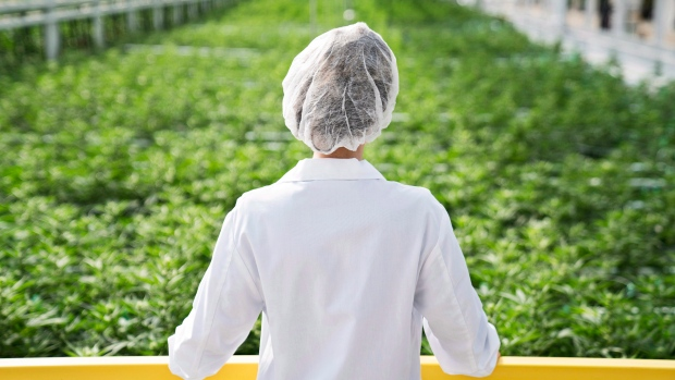Aphria (APHA) Receives Buy Rating from Canaccord Genuity
