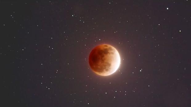 red moon 2019 winnipeg - photo #5