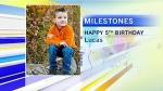 milestones-jan-31