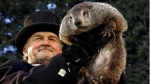 Groundhog Club handler John Griffiths holds Punxsutawney Phil, on Feb. 2, 2017. (Gene J. Puskar / AP)