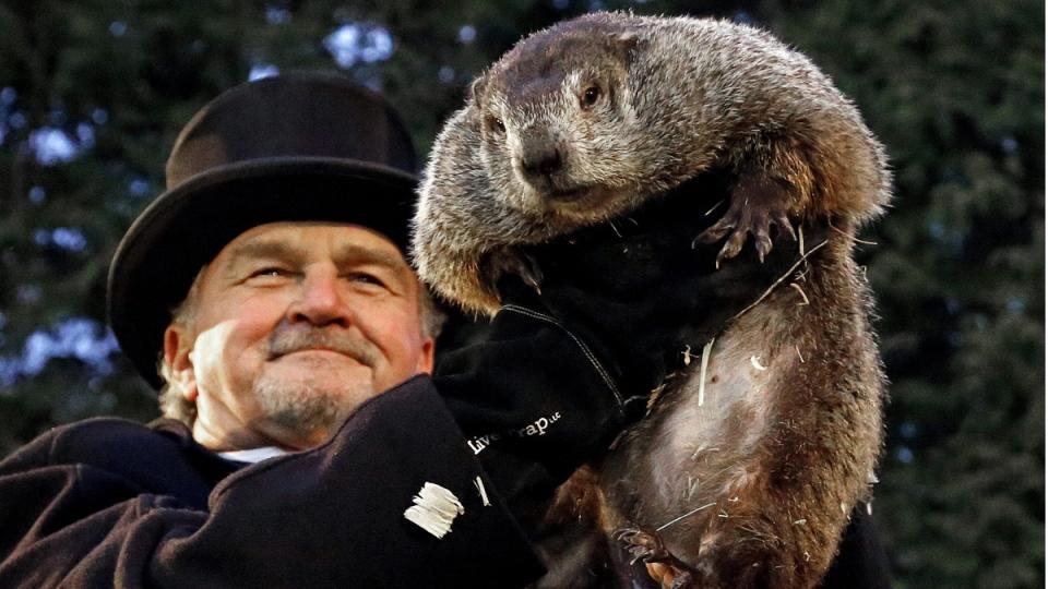 Groundhog Club handler John Griffiths holds Punxsutawney Phil, on Feb. 2, 2017. (Gene J. Puskar / AP)