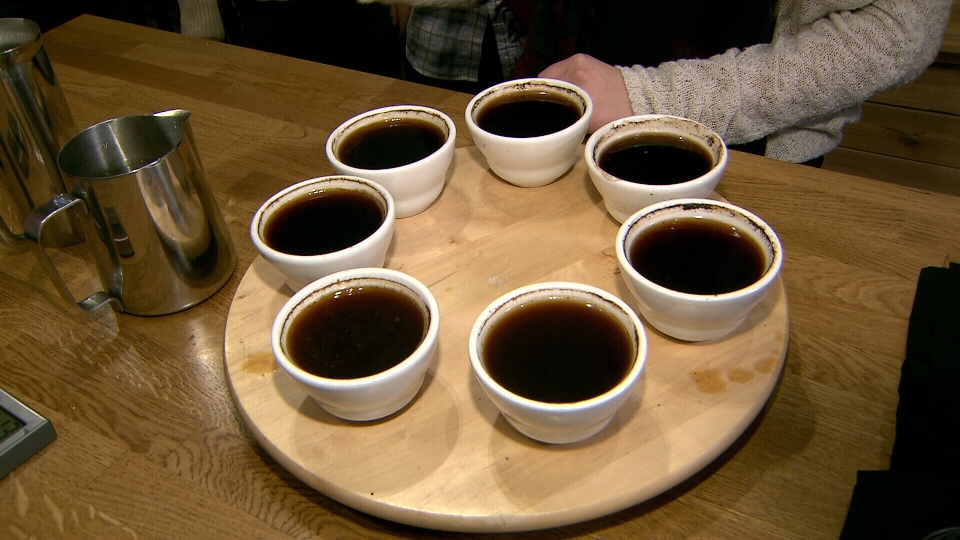 Our group of testers tasted these seven different brewed coffees to see which they prefer. (CTV)