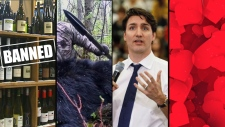 Our Primetime This Week Panel digs into the cross-border trade spat, a ban on spear hunting, backlash for a bad joke and romance in Alberta
