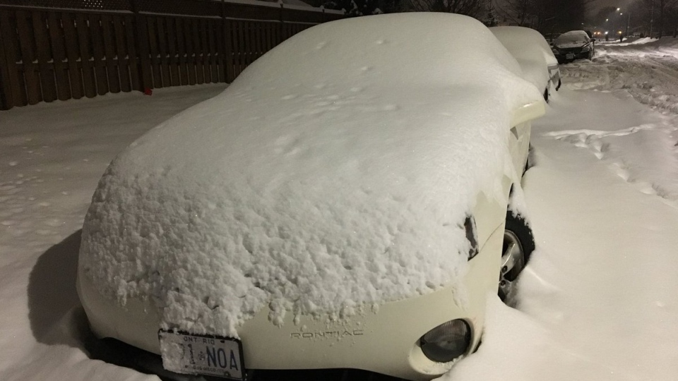 Snow covers several parked cars in Windsor, Ont., on Saturday, Feb. 10, 2018. (Gary Archibald / CTV Windsor)