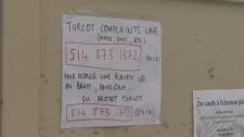 Turcot noise complaints.