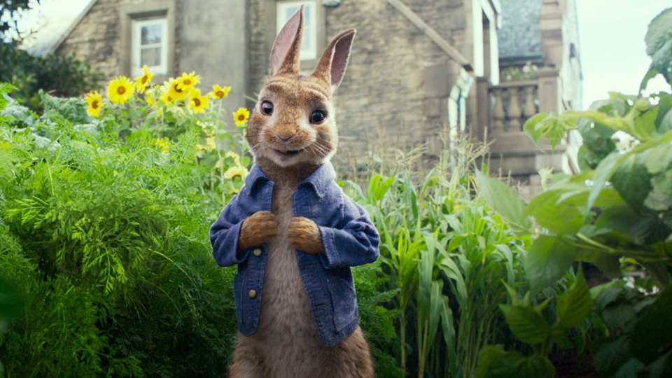 "This image released by Columbia Pictures shows Peter Rabbit, voiced by James Corden and Cottontail in a scene from ""Peter Rabbit."" (Columbia Pictures/Sony via AP, File)"