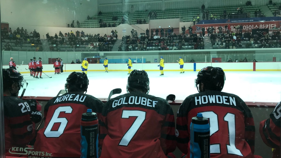 There may not be millionaire superstars on Team Canada this Winter Olympcs, but a mix of locals and Canada ex-pats were on hand to cheer them on during a pre-Olympic game against Sweden. (Peter Akman / Twitter)