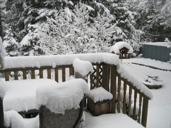 MyNews user Gord Mudryk sent in this photo from Edson, Alberta, showing the amount of snow the region received on Monday, May 18, 2009. (MyNews.CTV.ca / Gord Mudryk)
