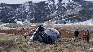 Research helicopter brought down by leaping elk