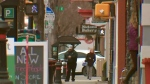 Saskatoon, Regina leading in population growth