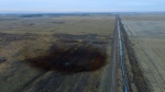 This aerial photo shows spills from TransCanada Corp.'s Keystone pipeline, Friday, Nov. 17, 2017, that leaked an estimated 210,000 gallons of oil onto agricultural land in northeastern South Dakota, near Amherst, S.D. (DroneBase via AP)