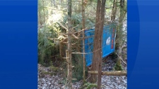 A couple located the stolen portable toilet while walking their dog Saturday, Feb. 17, 2018.
