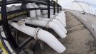 Pipes are seen at the Kinder Morgan Trans Mountain facility in Edmonton, Alta., Thursday, April 6, 2017. THE CANADIAN PRESS/Jonathan Hayward