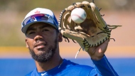 Toronto Blue Jays outfielder Teoscar Hernandez catches a ball at Spring Training in Dunedin, Fla., on Friday February 16, 2018. THE CANADIAN PRESS/Frank Gunn