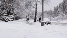 Coquitlam snow