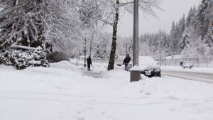 Coquitlam residents shovel snow on Feb. 17, 2018.