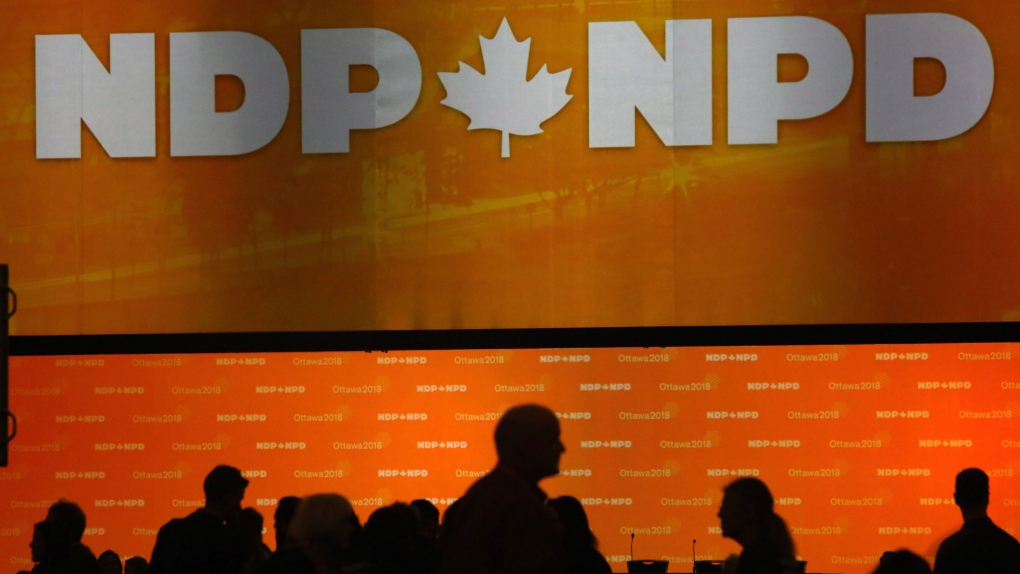 NDP convention