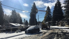 BC Hydro crews work to restore power in North Vancouver on Feb. 18, 2018.
