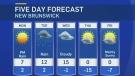 CTV Atlantic: Suzette Belliveau's forecast for Feb