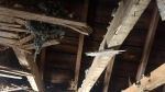 The third floor ceiling of Gillian Snider's home, following a house fire in January (Laura Woodward/CTV Saskatoon).