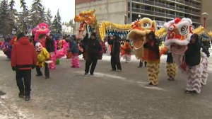 Year of the Dog celebrations continue