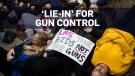 gun rally