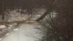 An ice jam along a body of water in Windsor-Essex. (Michelle Maluske / CTV Windsor)