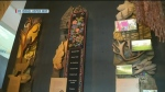 CMHR highlights Metis rights