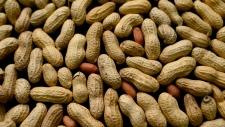 Peanut file