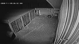 RCMP said a U-Haul cube van was used by three male suspects in the Feb. 2, 2018 break-in at Jurassic Forest. Supplied.