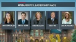 Ontario PC leadership candidates