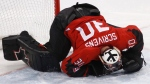 Goalie Ben Scrivens (30), of Canada, grimaces in pain after colliding with Veli-Matti Savinainen, of Finland, during the second period of the quarterfinal round of the men's hockey game at the 2018 Winter Olympics in Gangneung, South Korea, Wednesday, Feb. 21, 2018. (AP Photo/Jae C. Hong)