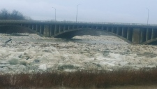 Brantford Flooding. (Courtesy Rojan Mahmood)