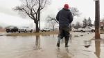 Flooding in Brantford