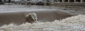 Grand River flooding