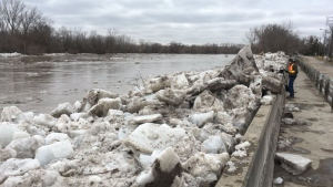 The Grand River flows through Brantford's Tutela Heights neighbourhood after the break-up of an ice jam. (Dan Lauckner / CTV Kitchener)