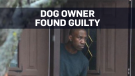 Dog owner found guilty of criminal negligence