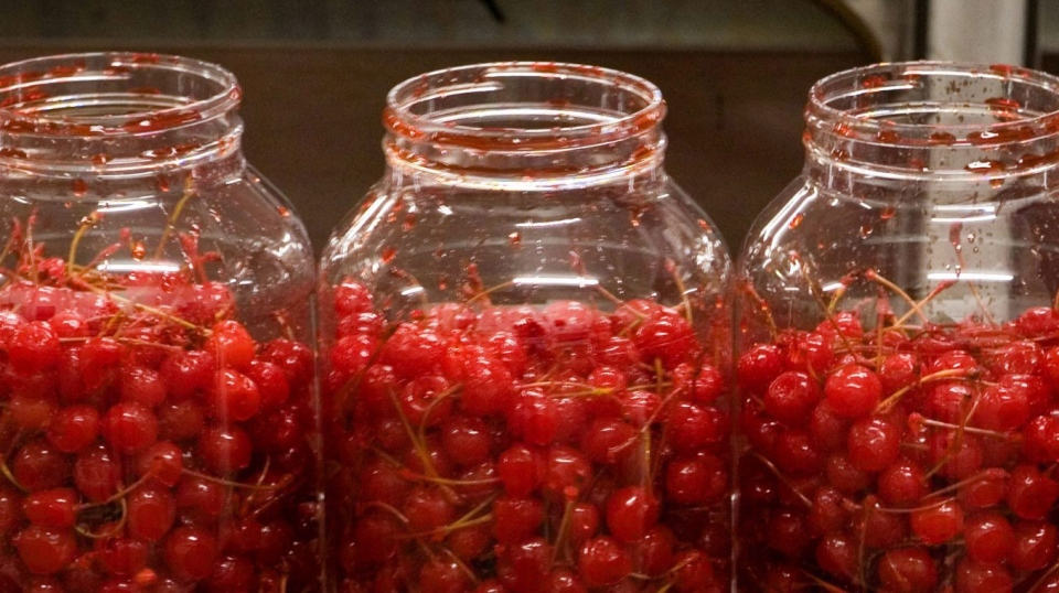 Jars of Maraschino cherries are shown in this file photo. (AP / The New York Times / Richard Perry)