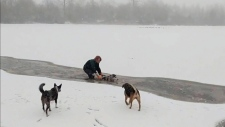Woman saves dog from Vancouver lake