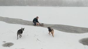 A woman rushed into the water and was eventually able to retrieve the dog, which doesn't even belong to her