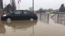 Thames River flooding in Chatham-Kent on Friday, Feb. 23, 2018. (Chris Campbell / CTV Windsor)